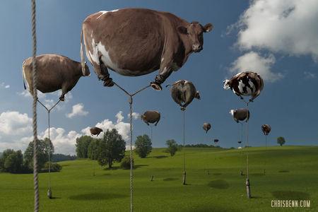 Surrealistická ZOO Chrisa Bennetta