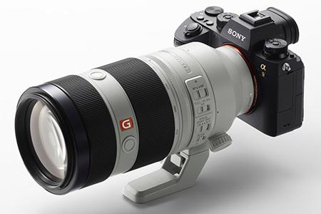 Sony A9 a FE 100-400/4,5-5,6 GM OSS