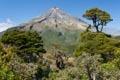 Vulkanická odysea: časť prvá - Taranaki