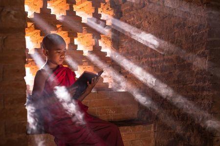 50 ohromujúcich fotografií zo súťaže #Education 2019 z celého sveta