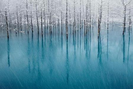Inšpiratívne fotografie zimnej prírody