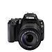 Canon EOS 200D (44).jpg