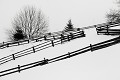 Foto-grafická zima