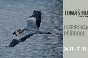 Výstava Tomáša Hulíka –  Inšpirované prírodou