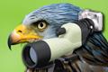 Birdwatching s Nikonom