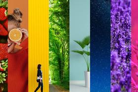 Jarné Zoner Photo Studio predbieha konkurenciu v úpravách farieb