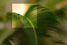 Novinka na ePhoto - voľba štvorcoveho náhľadu