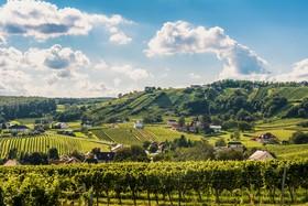 Burgenland - See