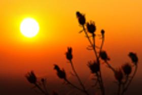 ''Makro'' západy slnka