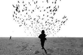 """Víťazné fotografie fotografickej súťaže """"Black & White"""""""