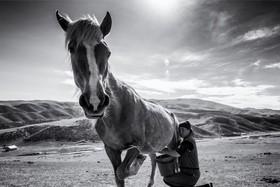 Mrcove príbehy fotografie V. - Kyrgyzstan