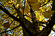 MatlonFoto_111014DSCN0113.jpg