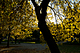MatlonFoto_111014DSCN0110.jpg