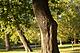 MatlonFoto_111014DSCN0098.jpg